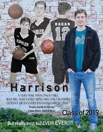 Harrison full page ad final B